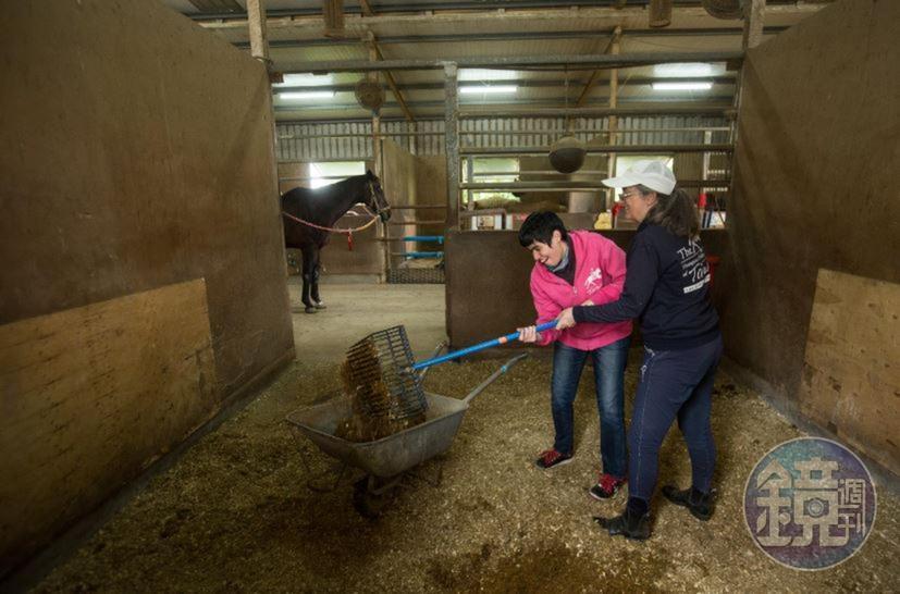 清掃馬廄也是安安每週的例行工作,Uta說,這是為了訓練女兒的肌肉耐力。在Uta的監督協助下,安安賣力清理馬廄裡的排泄物。
