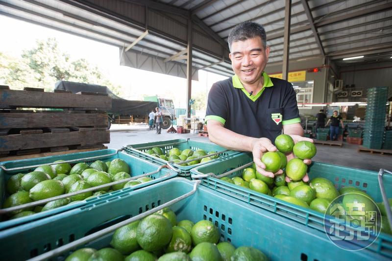 蔡耀輝將收購來的檸檬洗淨分級,不到1/100的鮮果送往果菜拍賣市場販售,其他則榨檸檬原汁急速冷凍。
