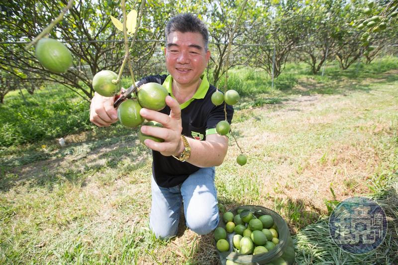 從4度創業失敗的魯蛇,蔡耀輝翻身成台灣一線連鎖茶飲品牌的主要原料供應商,卻差點進不了國內大學再進修。