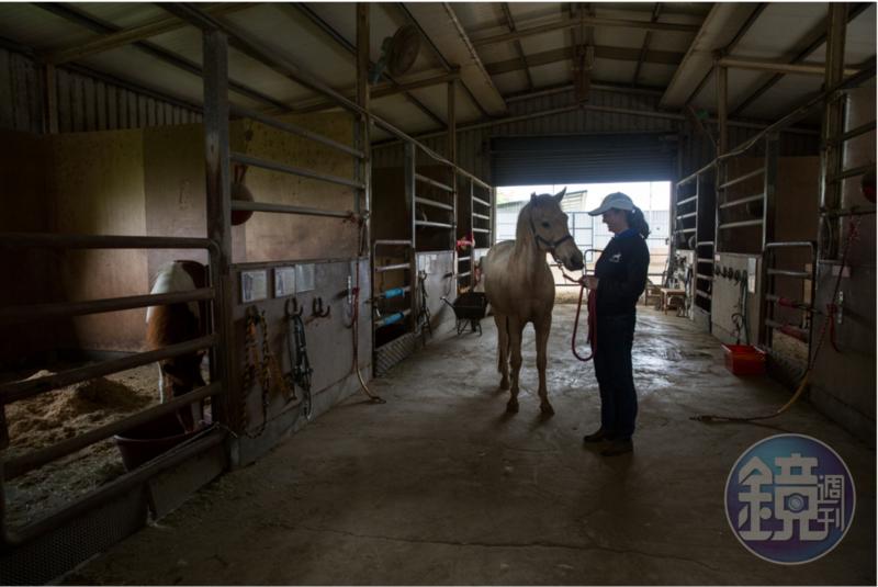 台灣馬術治療中心對待這些「馬醫生」又尊重又呵護,因為牠們是夥伴,是家人。圖為台灣馬術治療中心顧問Uta(林嫵恬)。