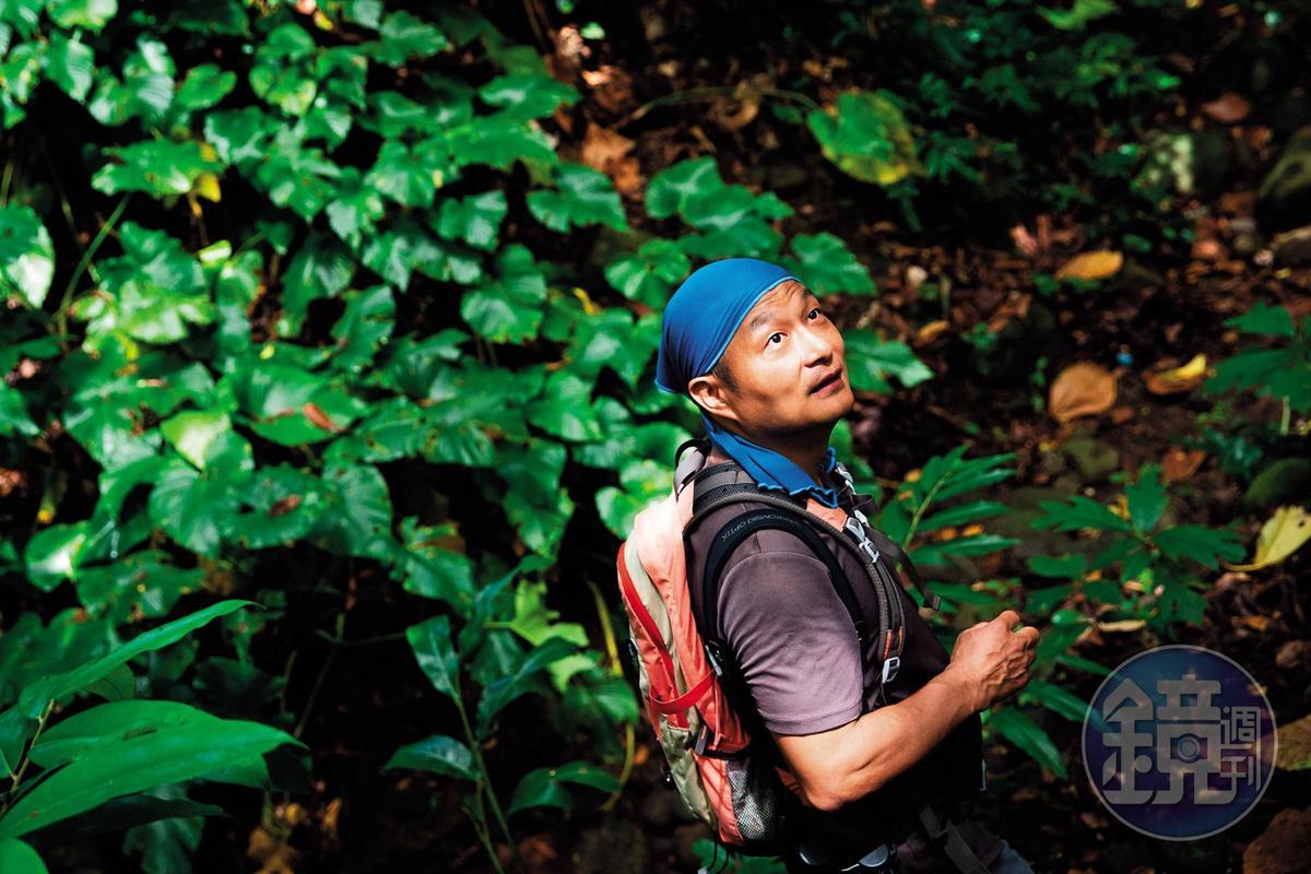 林青峰憑著自學,以及直接入山尋找動物、和動物實際交手的經驗,成為生態導覽員。