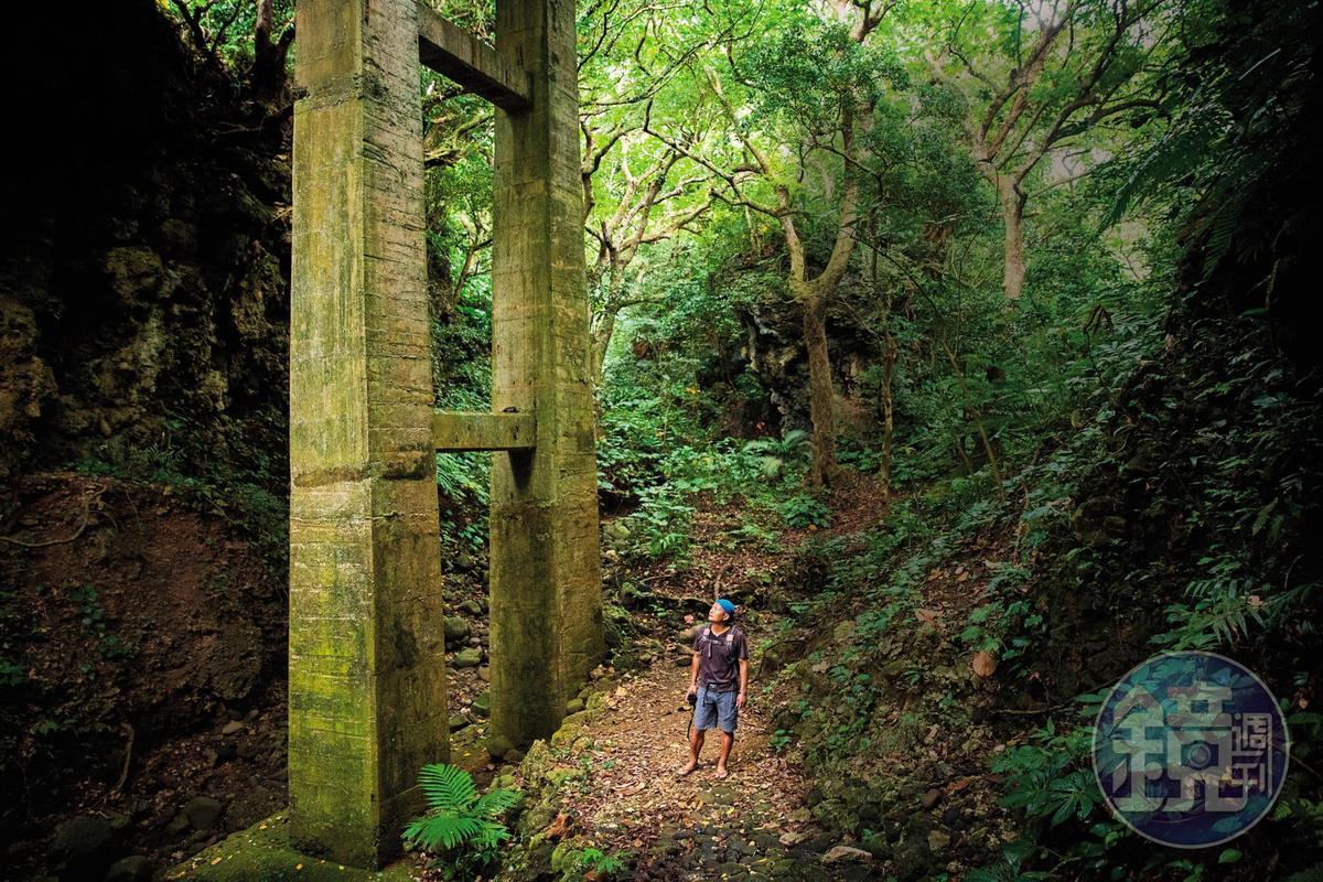 林青峰穿著夾腳拖鞋就入山了。在山裡,他循聲掃視,總是很快就能發現動物蹤跡。