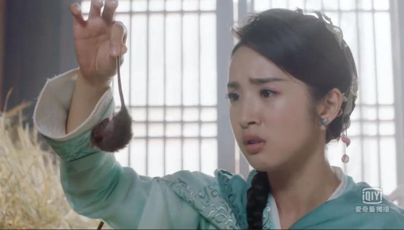 林依晨在《小女花不棄》中為戲徒手抓老鼠,讓觀眾驚呼敬業。(翻攝自愛奇藝)
