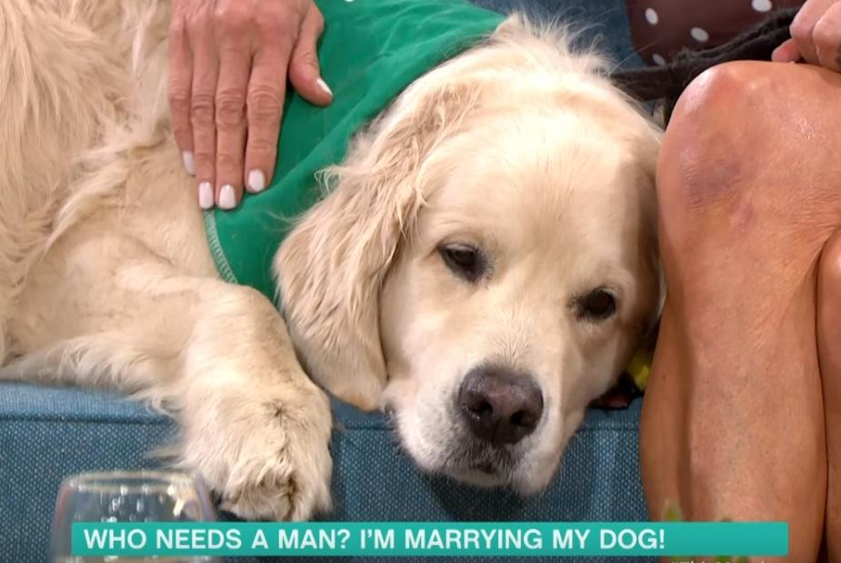 霍德的愛犬盧根今年6歲。(翻攝自This Morning youtube)