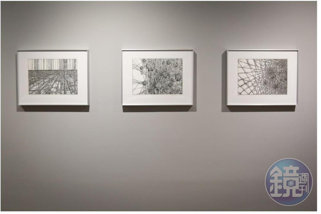 吳嘉華說德韋恩有很強的3D思考能力,他從大約20年前就喜歡塗鴉線條,這些年來他描繪的線條圖案,不時成為夫妻檔設計的靈感來源。