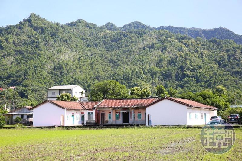 稻田裡的三合院,一側是「香蕉與黑膠三合院」,另一側則為住家。