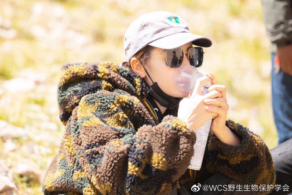 迪麗熱巴日前到西藏的藏北高原訪問自然保護區,因為高海拔得隨身攜帶氧氣瓶。(網路圖片)