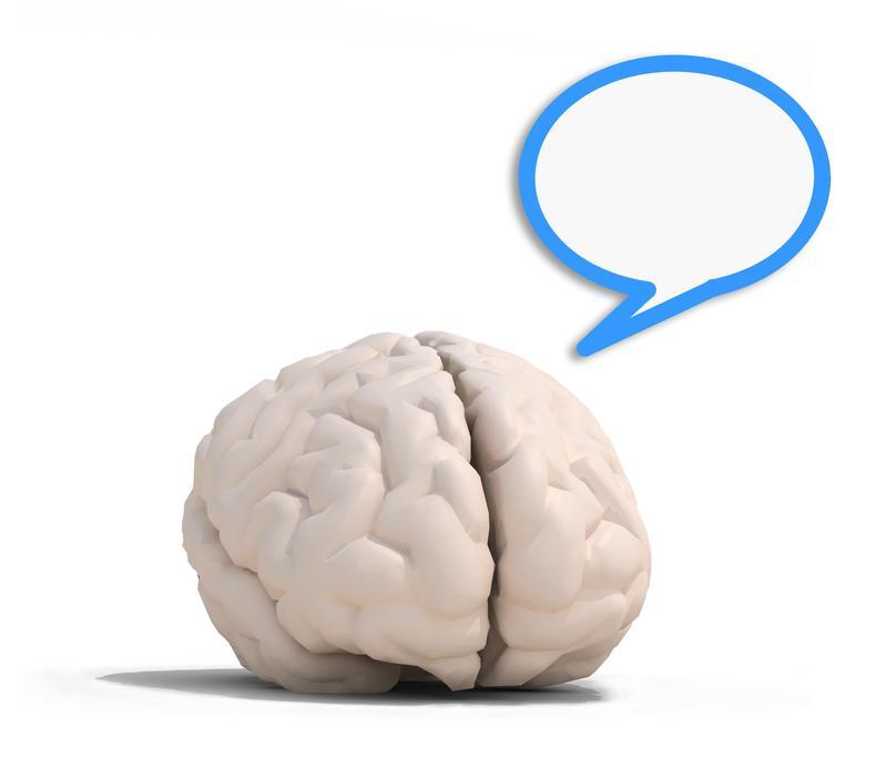 讓我們跟謝伯讓的《大腦好好玩》,一起用科學故事,讓腦說話!