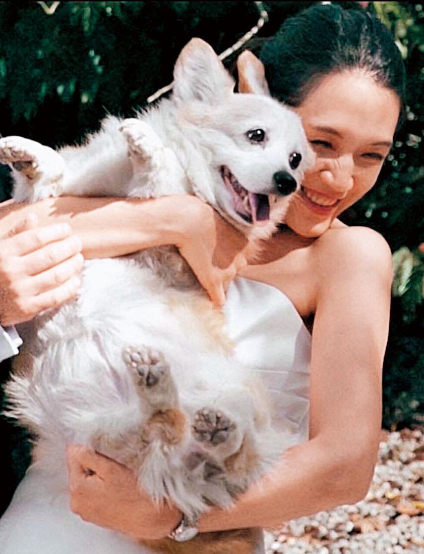 連詠心與雷明思都是愛狗人士,她的愛犬「Q比」,還曾一起入鏡拍過婚紗照。(翻攝臉書)