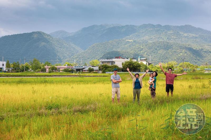 深溝的田此時休耕,田間恣意長出稻,走在田裡後方有山,景色怡人。