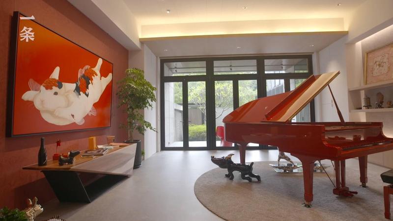 開門見紅,鯉魚兔畫作及訂製的紅色鋼琴都為老蕭帶來極佳財運。(翻攝自一条youtube)