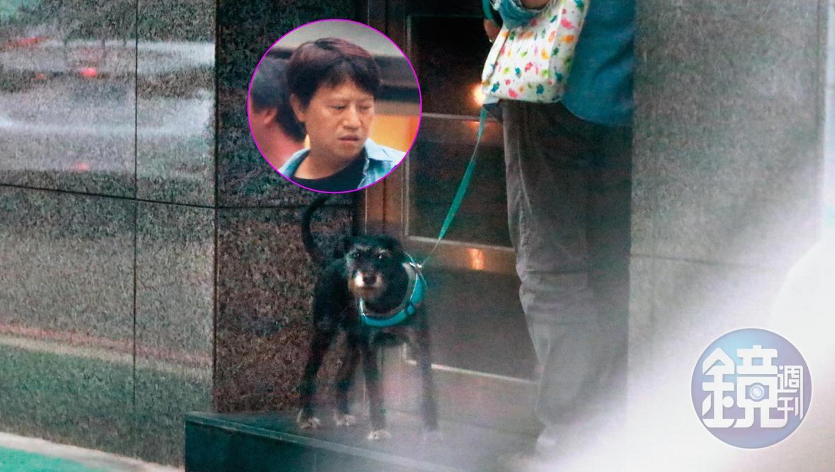 10/15 17:05 陳孝萱的新歡叫作柳建名,他除了跟她有幾乎相同花色的袋子,且以男主人的姿態遛著陳孝萱的狗狗,看起來還算慈眉善目。