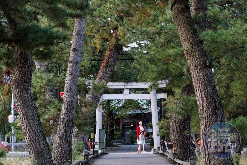 傳說中天女脫下羽衣掛在三保松原的老松樹上,連接羽衣之松與御穗神社的,便是這條500公尺長的「神之道」。