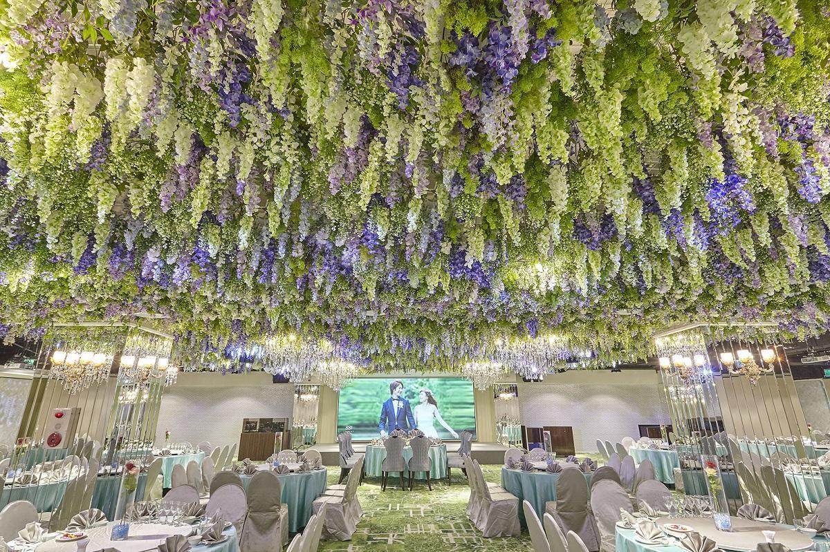 「維也納森林」在連綿的紫藤花下,譜寫出浪漫樂章。