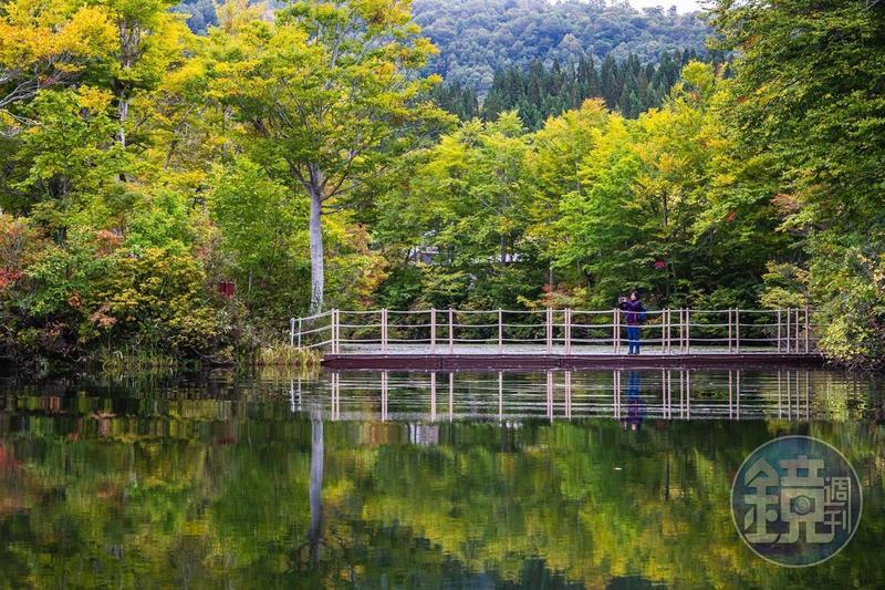 位在日本山形月山附近的「地藏沼」,秋天山色倒映水面,形成迷人風景畫。
