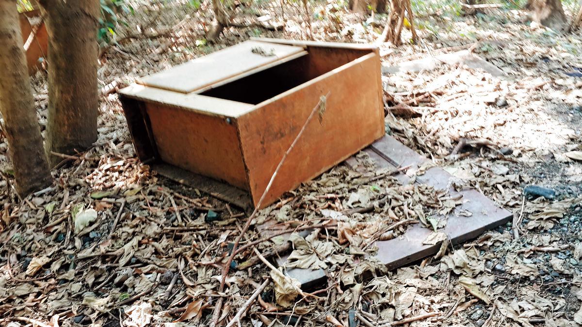 黃文進找來廢門板和木箱,堆放在埋屍處上方當標記。(翻攝畫面)