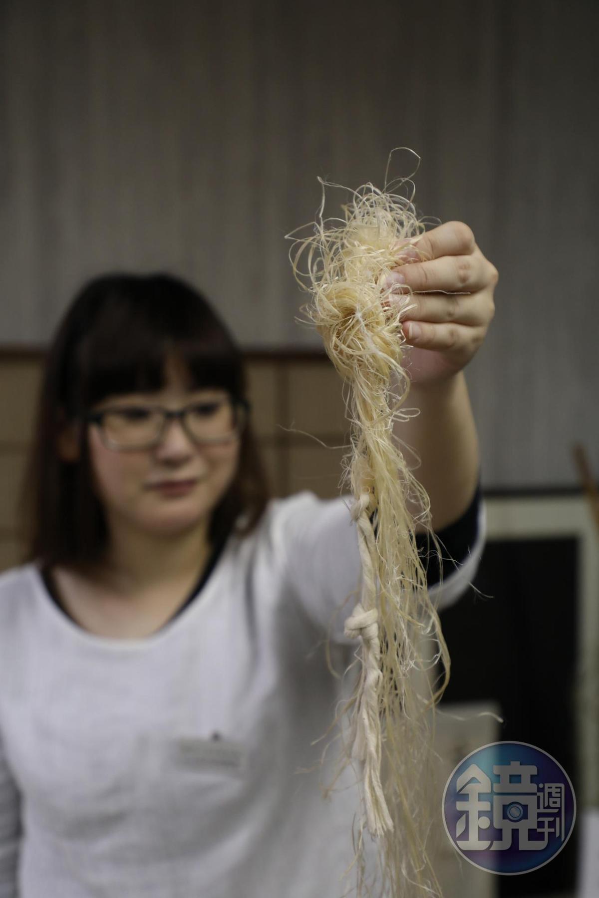 織布老師京野星子手上拿的是越後上布的主要材料、用苧麻做成的線。