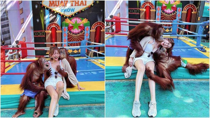 網路上近日傳出一組「猩抓妹」被猩猩強揉乳、強吻的照片,引起熱議。(翻攝wendywenbaby IG)