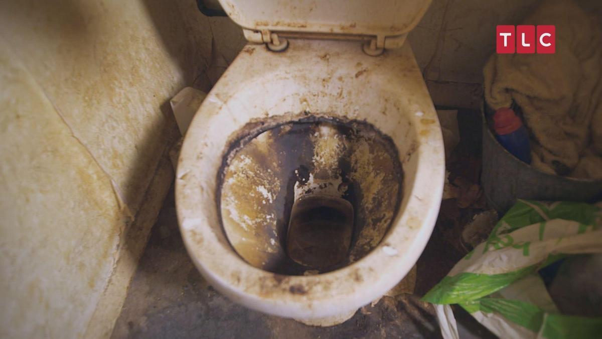 就跟你們說上完馬桶要按沖水,不然就很麻煩。(TLC旅遊生活頻道提供)
