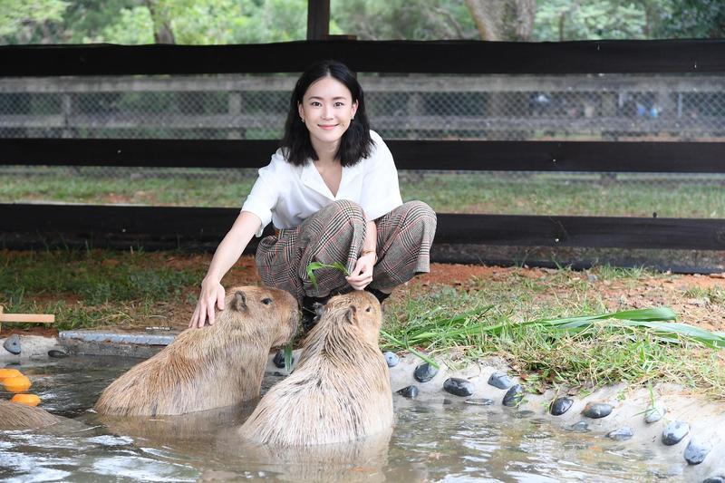 看見水豚的可愛模樣,鍾瑶少女心大爆發。(三立提供)