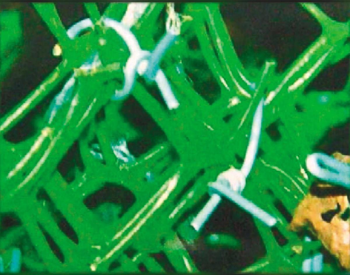 綠色塑膠網上共有八十多個藍色電線結,用來固定籠子。(翻攝畫面)