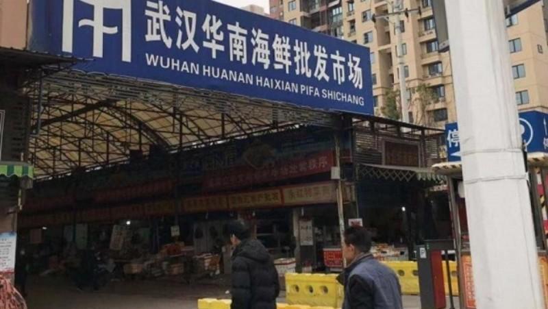 世界衛生組織表示,此次疫情與「華南海鮮批發市場」有關。(翻攝自網路)