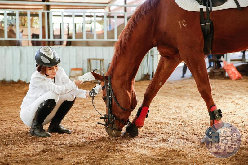 斯容現在注意力都在養馬、練馬術,過年前才初階馬術完賽拿到金牌。