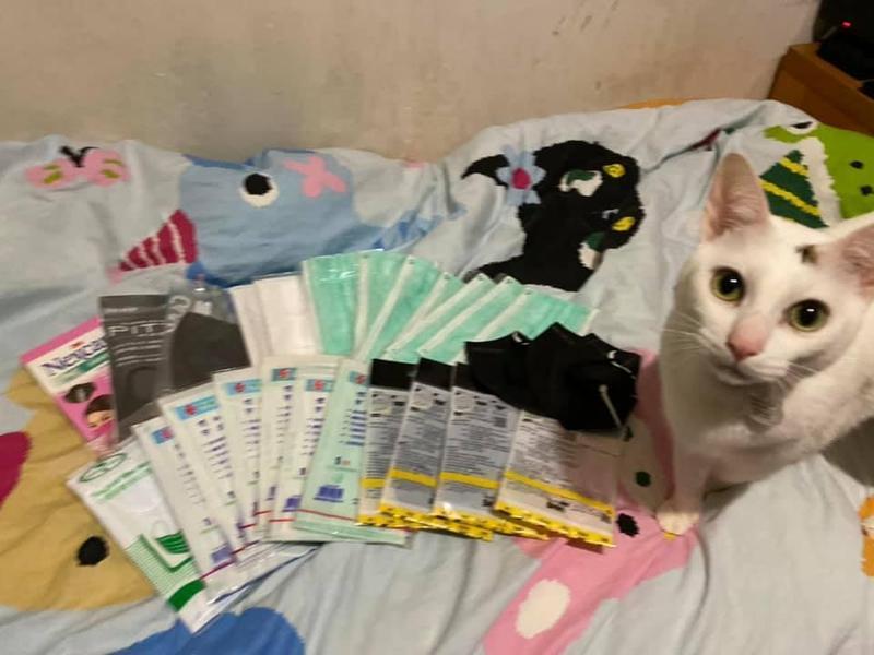 有網友在臉書分享,自家的貓咪竟然意外挖出「寶」,報答主人養育之恩。(翻攝小吉與砂糖臉書)