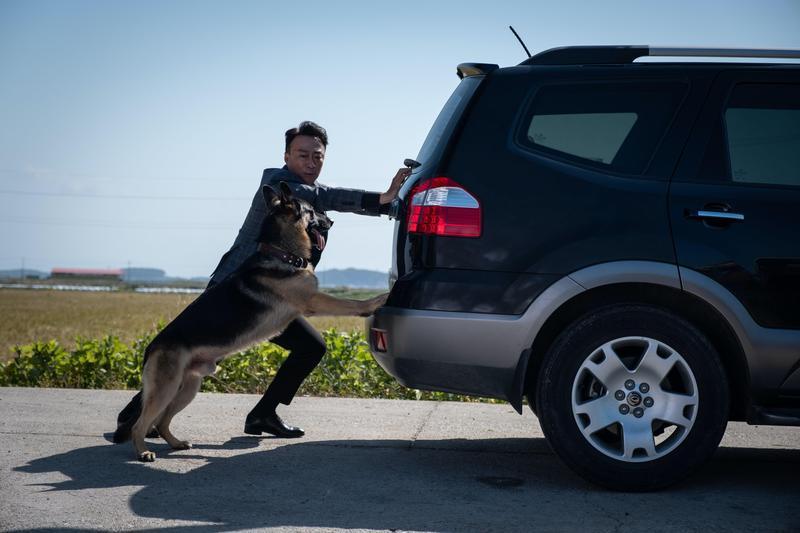 李星民折服與天才狗演員阿里的演出能力。(CATCHPLAY提供)