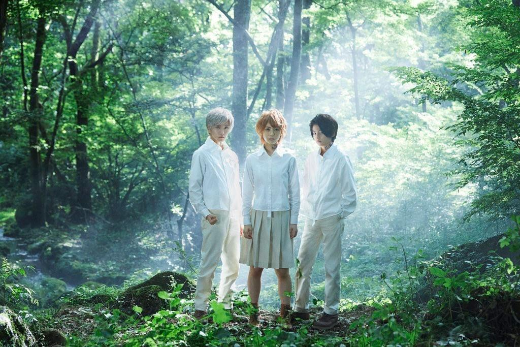 日本拍攝的《約定的夢幻島》真人電影版由《狂賭之淵》真人版演員濱邊美波(19 歲)飾演艾瑪、《小偷家族》城檜吏(13 歲)飾演雷、《假面騎士 Zi-O》板垣李光人(18 歲)飾演諾曼。