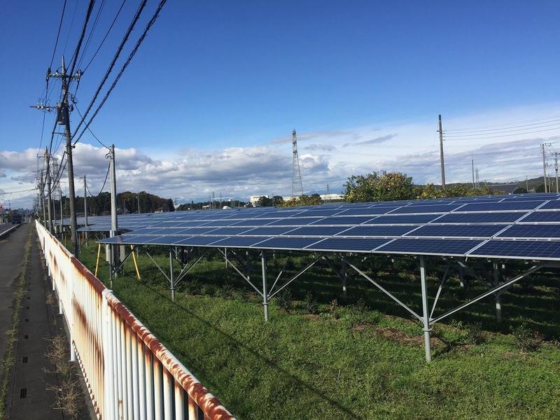 日本在福島核災後,深知地震國不能仰賴核電,於是在廢耕地的太陽能電板下栽種農作物,結果非常成功。(日本營農型發電協會)