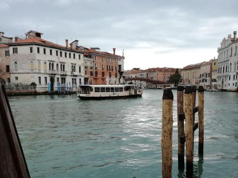 義大利爆發疫情後,觀光客少了大半,水都威尼斯變得十分寂靜。(翻攝推特@ScottTrudell)