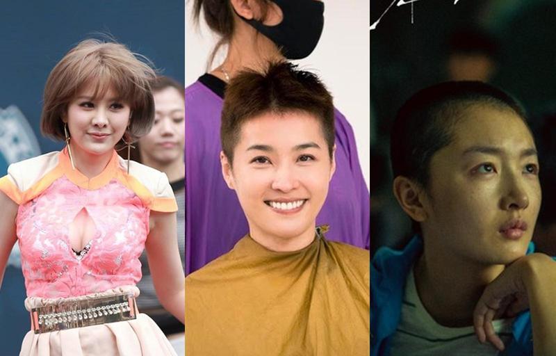女明星為了詮釋角色,甚至不惜剃頭演出。(翻攝網路)