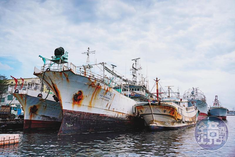 超過70艘遠洋漁船自月底將陸續返台,漁業署定調,船隻有海上接觸史或船員有症狀,就須1人1室檢疫14天。