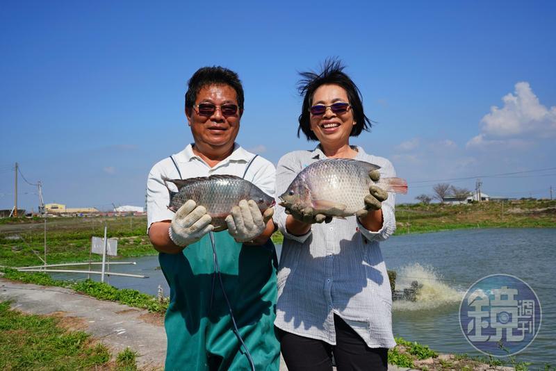 哥和亮嫂兩人攜手為養殖園地奮鬥了31年。
