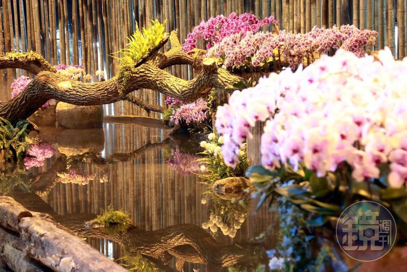 水景、花卉、倒影構成的景色,給民眾不同以往的看展新感受。