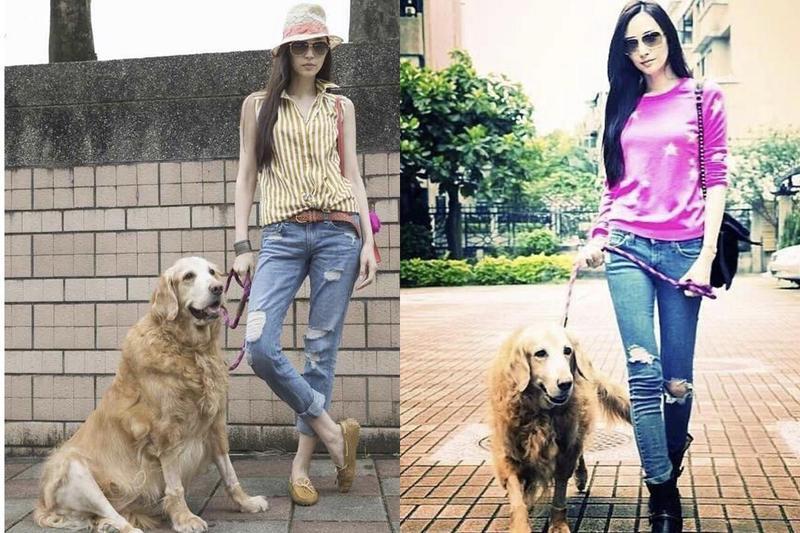 吳佩慈是個愛狗之人,多年前曾養過一隻黃金獵犬Hans,也曾給熊爸上課。