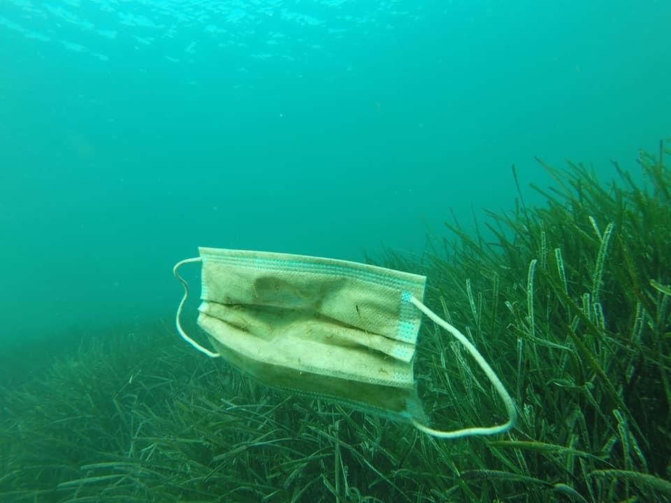 法國NGO組織在海底打撈到大量防疫用外科口罩。(翻攝自Opération Mer Propre粉絲專頁)