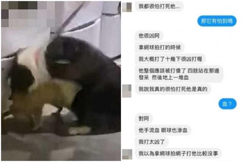 台北知名網紅咖啡店以可愛「浣熊」吸引客源,卻被網友爆料有虐待動物之嫌。(翻攝自臉書)