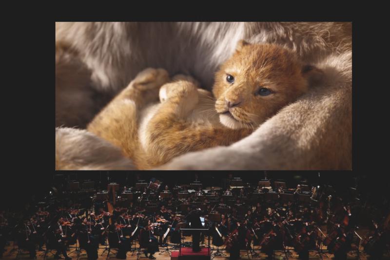 擬真版《獅子王》電影交響音樂會將於12月登台首演。(牛耳藝術提供)