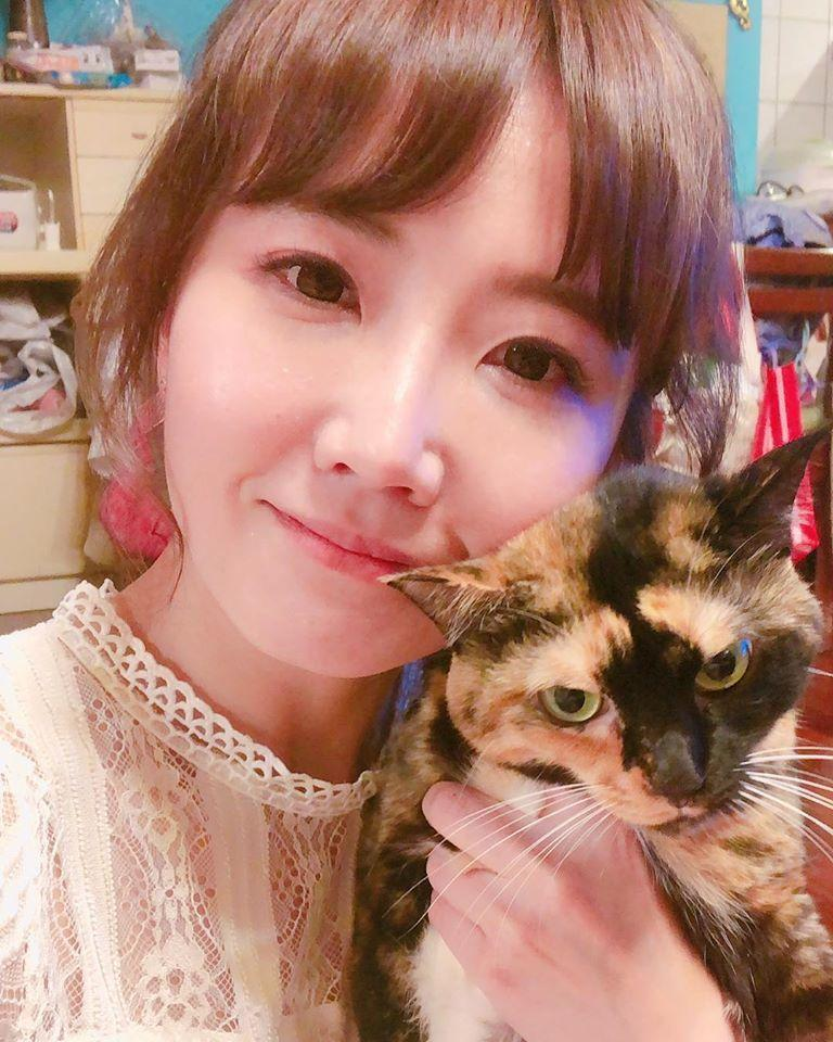 謝忻前3隻貓叫謝虎林、謝中坡及謝板橋,圖中的謝中坡是來自中坡北路,是她在內湖收容所領養。(翻攝自謝忻臉書)
