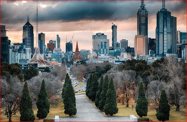 墨爾本市政府宣布將在疫後進行大規模城市綠化。(翻攝推特)