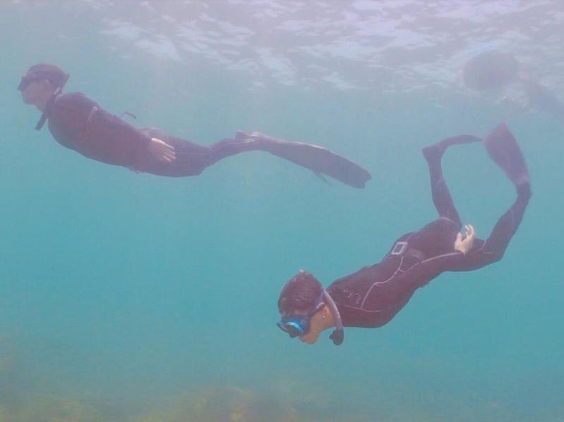 柯震東開個人youtube頻道,首集邀來蔡昌憲一起潛水。(禾豐九路提供)