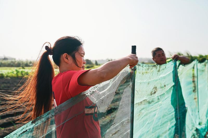 從越南嫁來台灣的阿紫,映照了許多因金錢遠嫁來台,在此備受歧視而孤立的外籍配偶。(台灣國際紀錄片影展提供)
