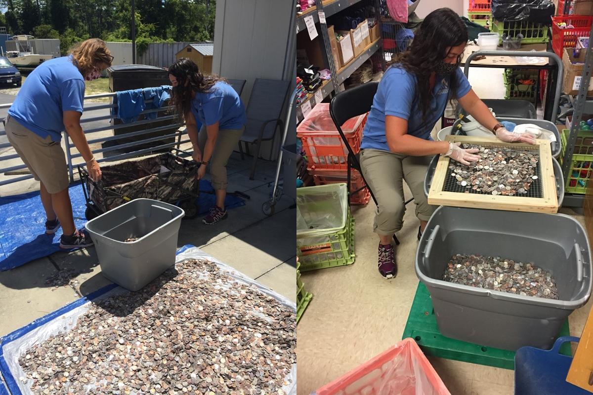 館方透露,清理硬幣花費了不少時間。(翻攝自臉書 @NC Aquarium at Pine Knoll Shores)