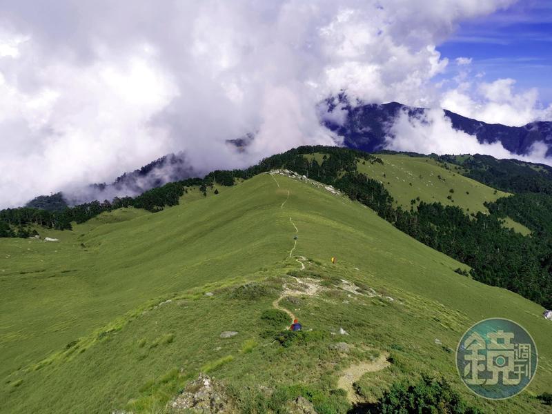 山頂上的大草原,總是讓人心曠神怡而心生嚮往。
