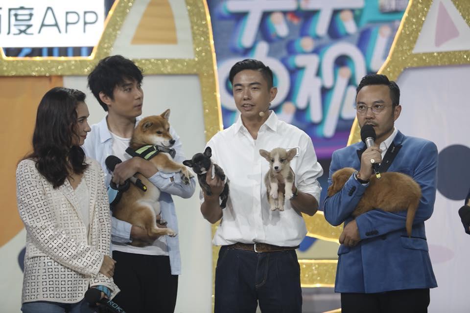 「熊爸」上節目分享訓練教育狗的經驗與趣事,他說:「沒有教不會的狗,只有教不會的主人。」(翻攝自熊爸訓練師王昱智犬類行為專家臉書)