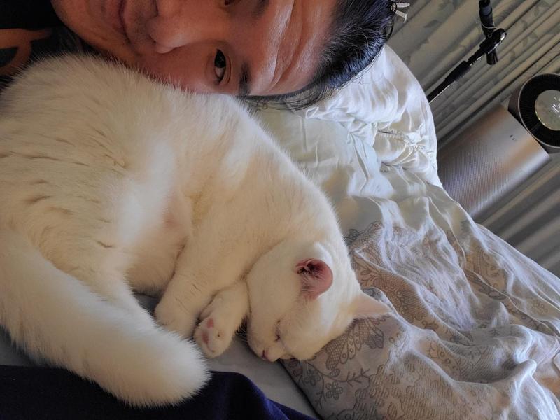 館長今(3日)低調從林口長庚出院返家,稍早他在臉書放上跟愛貓的合照。(翻攝自飆捍粉絲專頁)