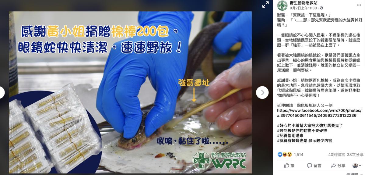 《野生動物急救站》po文表示有眼鏡蛇誤入蟑螂屋被黏死,經過一番工夫終於順利解救。(圖截自《野生動物急救站》臉書)