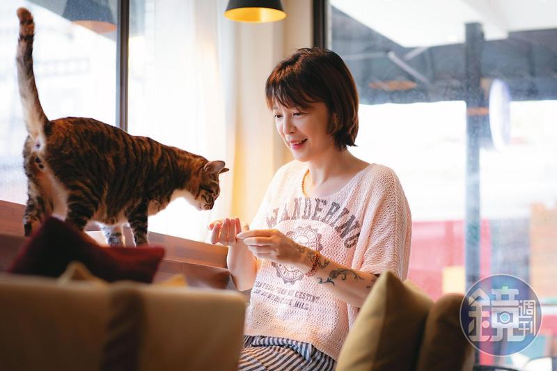成英姝說話大剌剌的,但看到咖啡廳裡的貓跑來,她瞬間變成小少女,驚喜地逗弄貓咪。